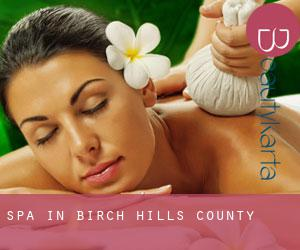 Spa in Birch Hills County