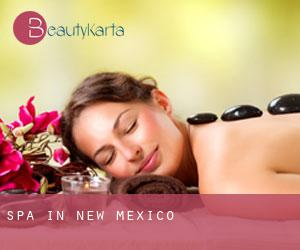 Spa in New Mexico